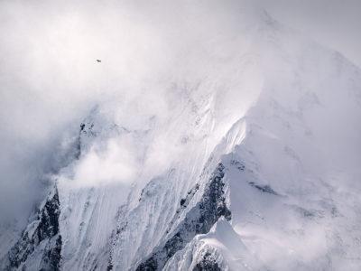 #150 vol d'un gypaète devant l'impressionnante face nord de l'Annapurna II